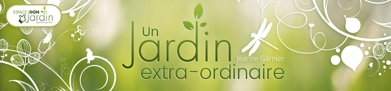 band-DON-Jardin